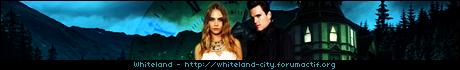 Demande de design Whiteland RPG Link460x70