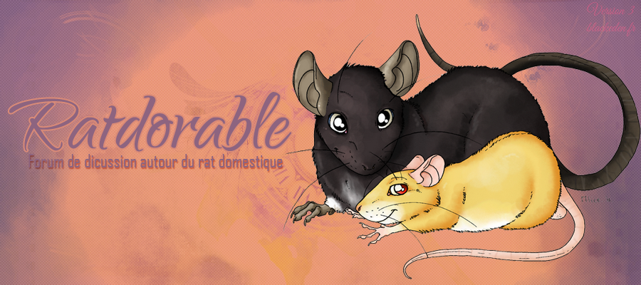 Ratdorable